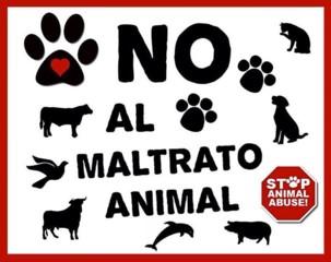 Detenido por matar a ocho perros en un cortijo abandonado