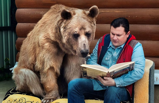 Russian Couple Adopts Orphaned Bear. 23 Years Later, They Still Live Together!