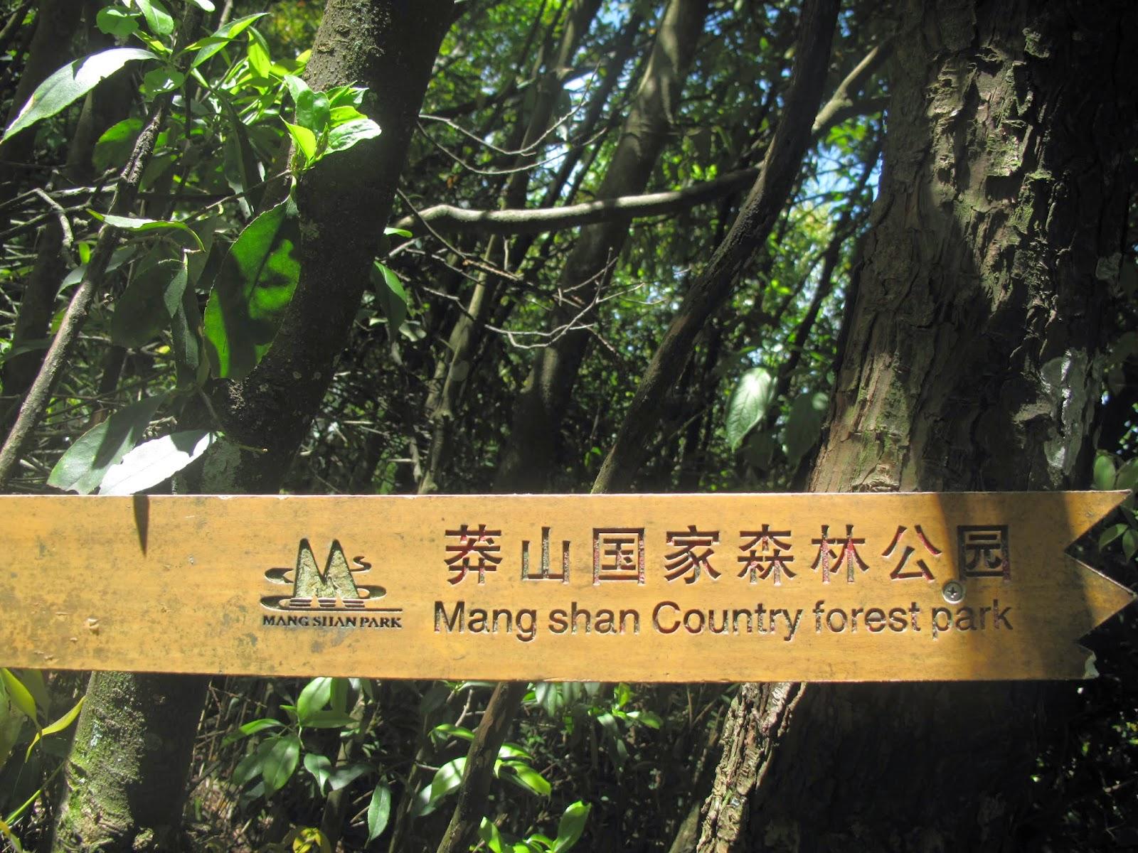 費慧莎的角落: 到湖南莽山國家森林公園_從香港出發的公車路綫