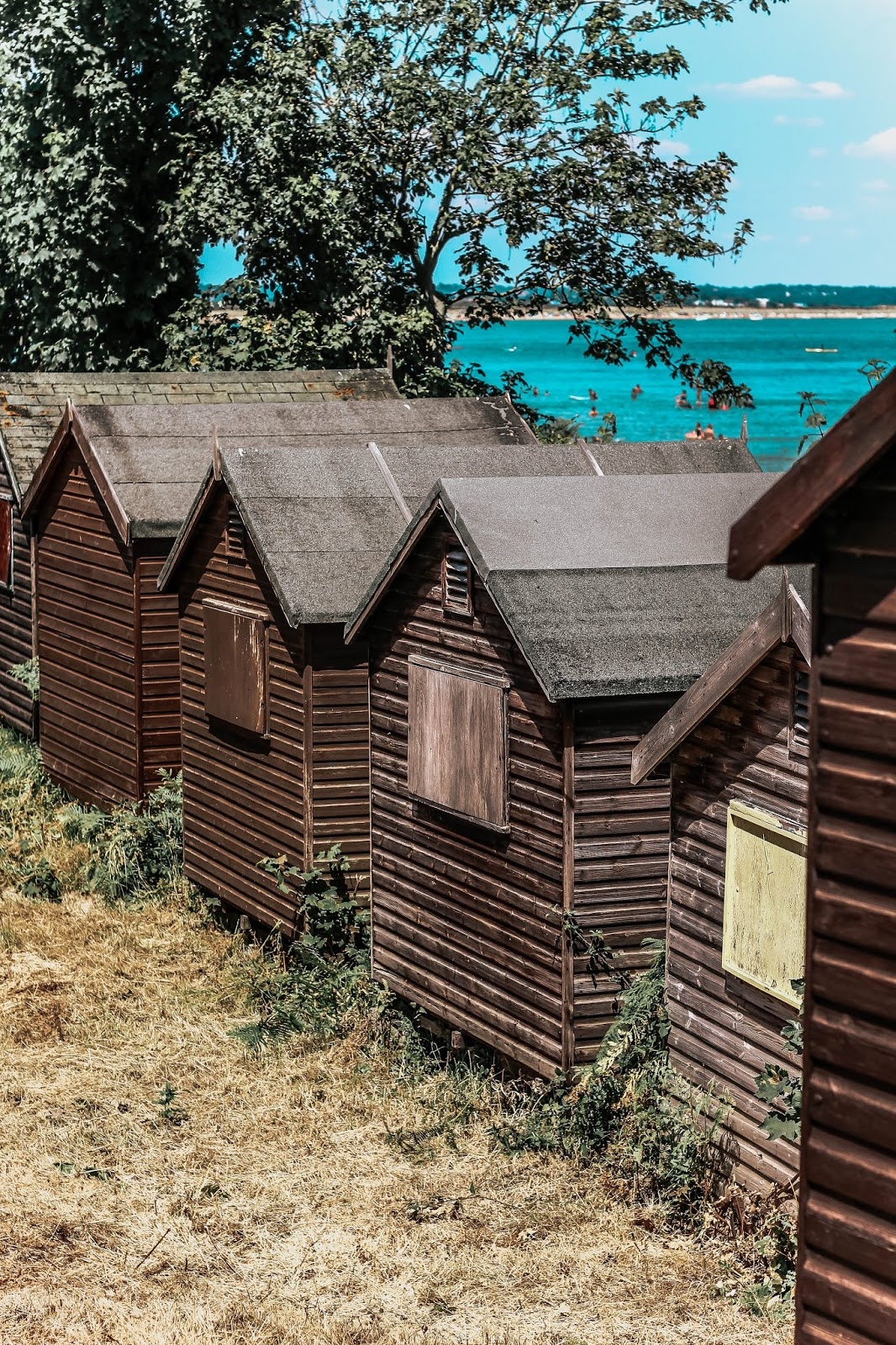 National Trust Studland Bay Beach Huts in Summer