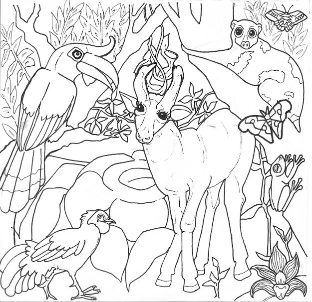 Rainforest Coloring Pages With Rain Forest Animals Coloring Pages Jungle
