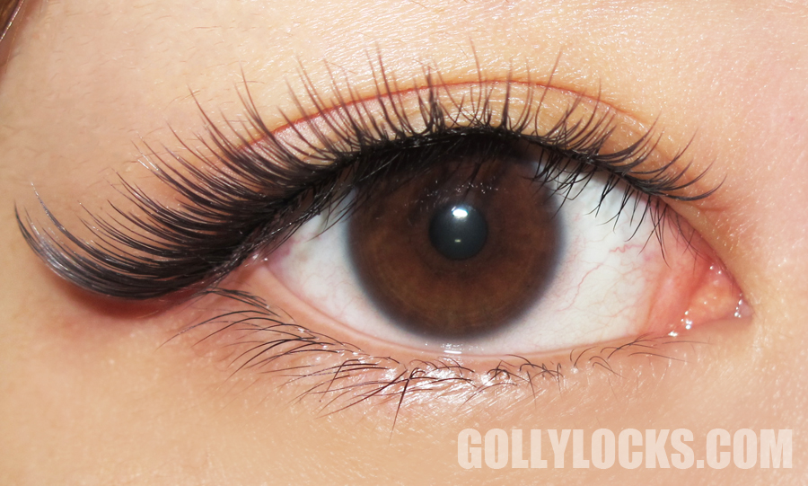 63a39a12f9d Here's how the lashes look like with nothing else on, not even eyeliner.  (Picture above)