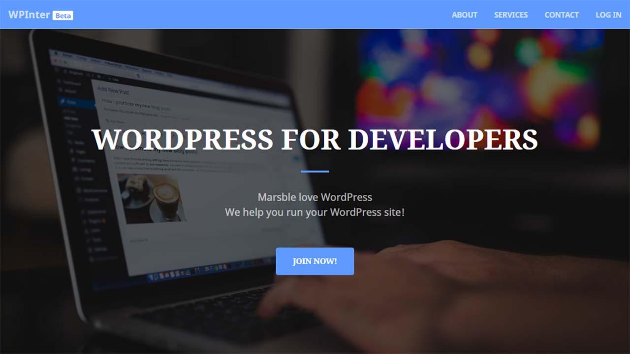 WPInter, Free WordPress Yang Handal Cocok Untuk Developer