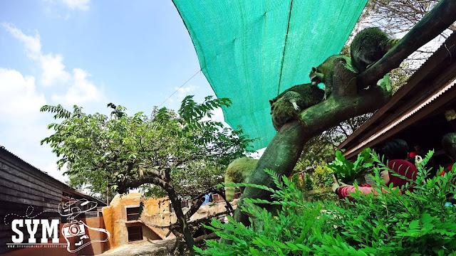 FARM IN THE CITY SERI KEMBANGAN