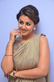 Nikki Galrani in Saree 053.JPG