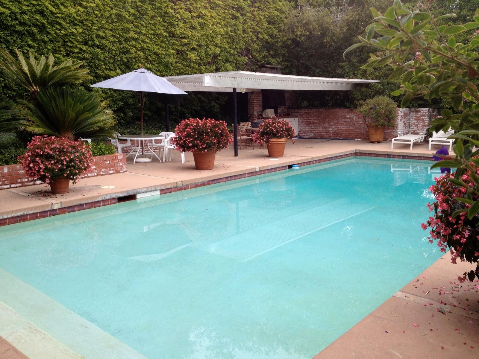Backyard Splash