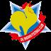 Shanghai Shenxin FC 2019 - Effectif actuel
