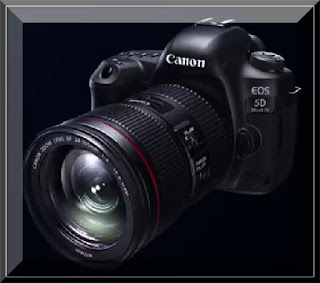 Canon Eos 5D Mark IV Sensor Issue