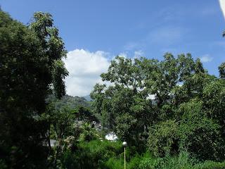 Turismo en Venezuela, Asesoria Inmobiliaria Milagros Fernandez Gerencia de Negocios 0212.4223247/04123605721 - Venta y Alquiler de Inmuebles