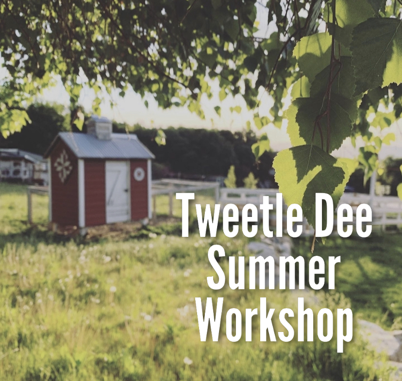 Tweetle Dee Summer Workshop