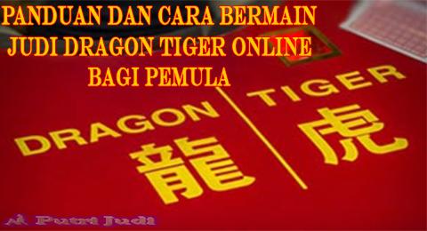 Putri Judi : Cara Bermain Judi Dragon Tiger Online