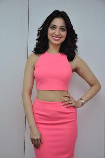 Actress Tamanna Stills in Pink Dress at Oopiri Movie Interview  0063.jpg