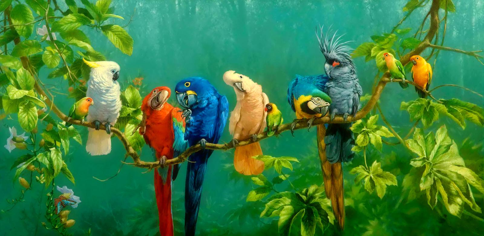 Fond ecran gratuit printemps animaux fonds d 39 cran hd for Fond ecran animaux hd