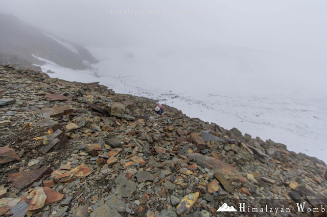 Solo self supported pin parvati pass trek