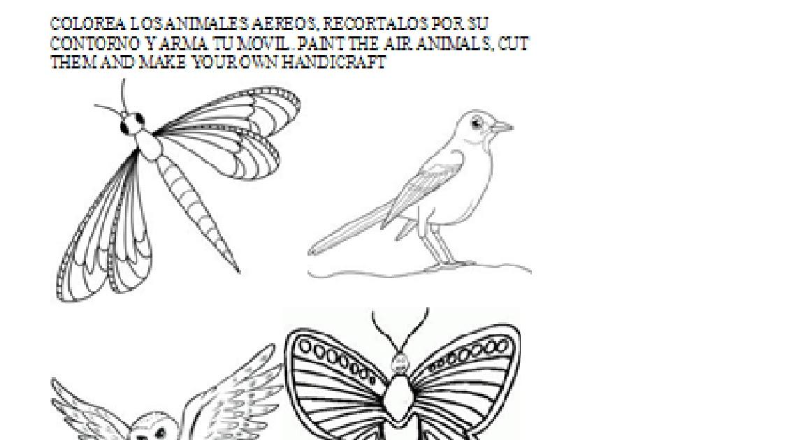 Aprendamos Ciencias Naturales En Inglés Guia 4 Animales