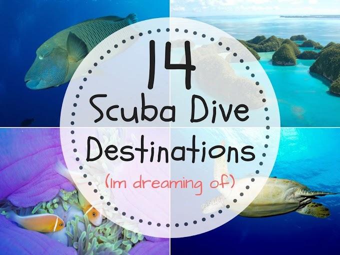 14 Best Scuba Diving Destinations In The World