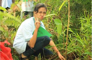 Reboisasi Kawasan Hutan