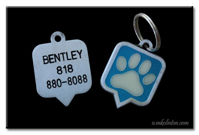 PAWtechnologies tags can help you reunite with your pets