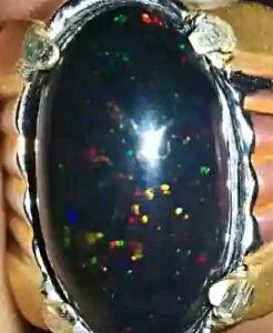 cara ekstrem merawat black opal