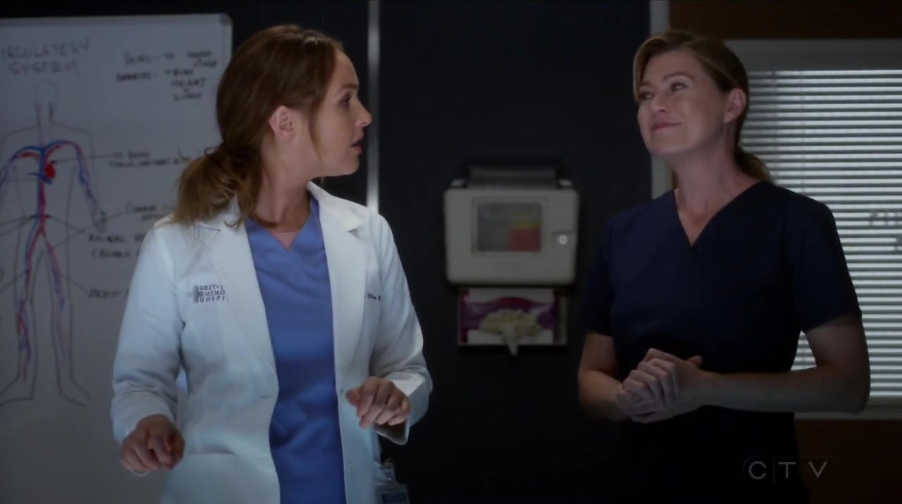 Grey's Anatomy 14x06 Come on Down to My Boat, Baby