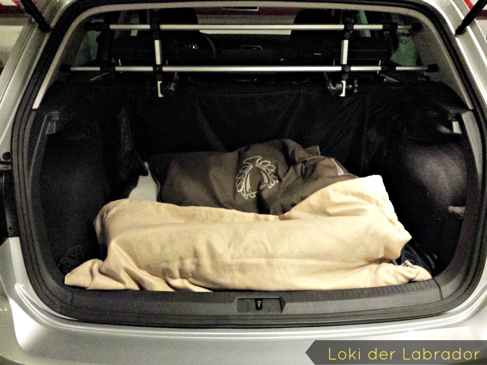Kofferraum Hundebett