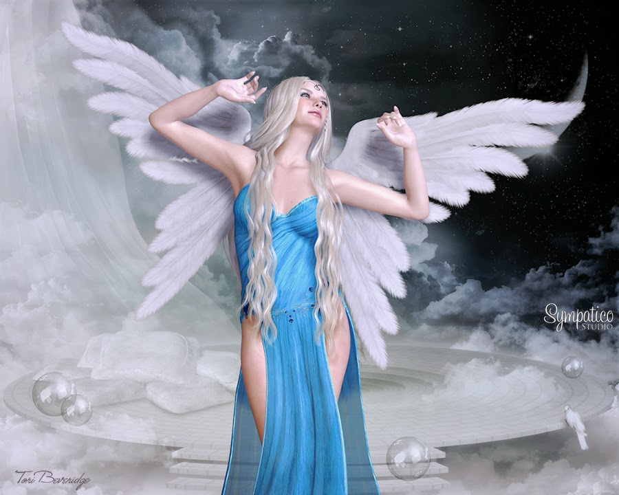 Angelic Wonder by Tori Beveridge 2014