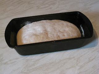 white bread dough rising in tin