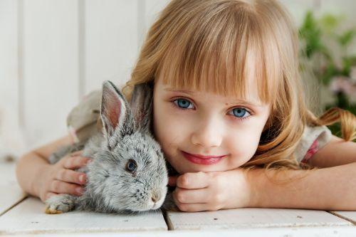 konijn tips informatie
