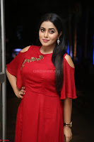 Poorna in Maroon Dress at Rakshasi movie Press meet Cute Pics ~  Exclusive 17.JPG
