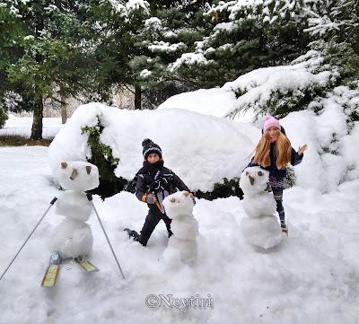 Barbie winter sports skiing snowboard