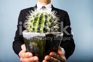 Ferocactus-terrarium-jakarta-indonesia-blogspot-com8