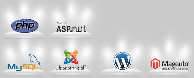 Affordable Web Development Company in India, Web Development Services Provider in India