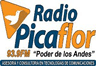 Radio Picaflor 104.3 FM