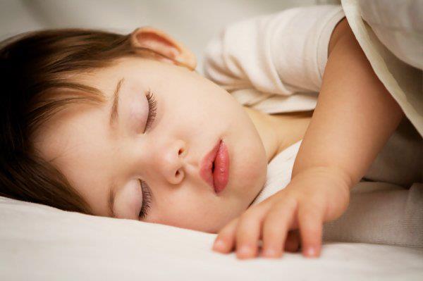 فتوى ;فضل قراءة سورة الملك, فضل قراءة السجدة قبل النوم