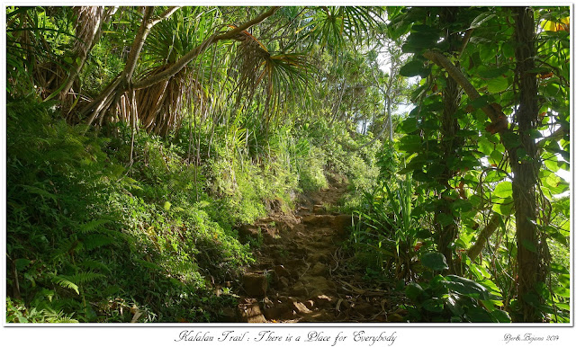 Kalalau Trail: There is a Place for Everybody
