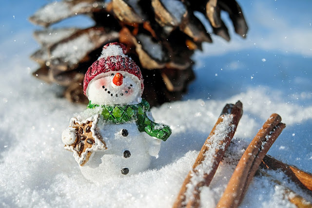 Winter Fests in the Chicago Suburbs