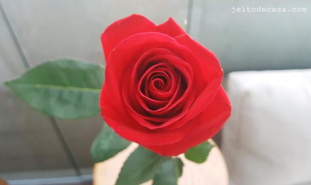imagem-de-rosa-vermelha