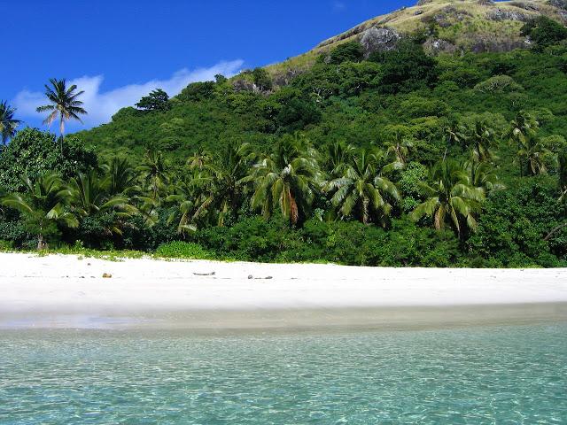 Fiji island and rainforest