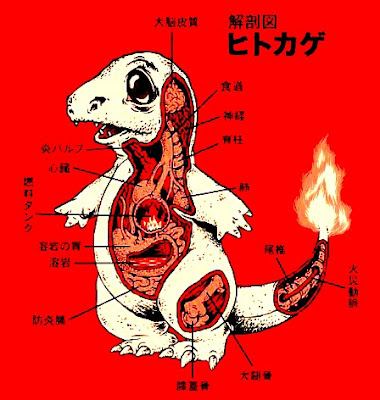 Anatomy Of A Fire-Breathing Pokemon (Something Interesting)