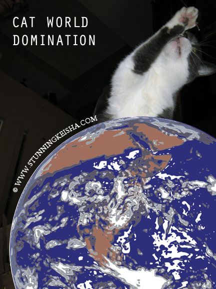 Cat World Domination Day Song