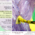 Agenda | Día del Libro + exposición en el jardín botánico de pintura sobre insectos