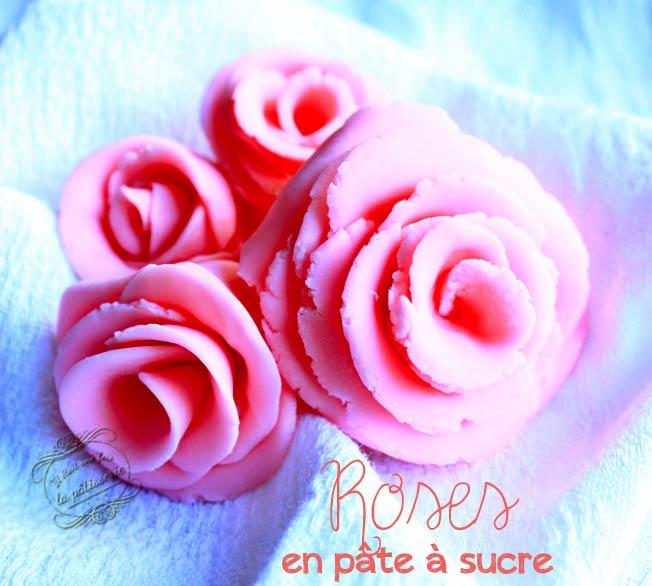 Rose en pate a sucre sans emporte piece