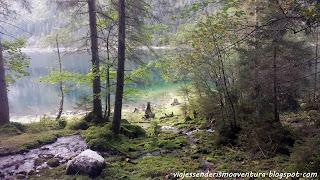Austria - Gosausee; uno de sus preciosos rincones