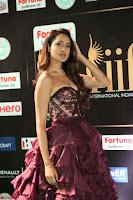Pragya Jaiswal Sizzles in a Shantanu Nikhil Designed Gown  Exclusive 054.JPG