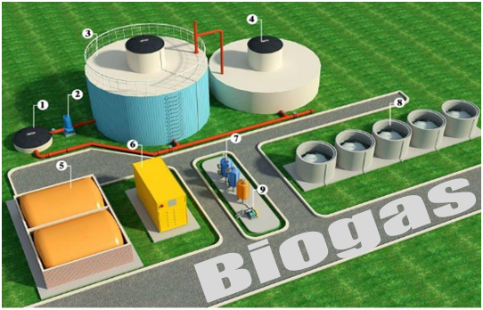 Permalink ke Peran Penting Basil Metanogen Dalam Pembuatan Biogas