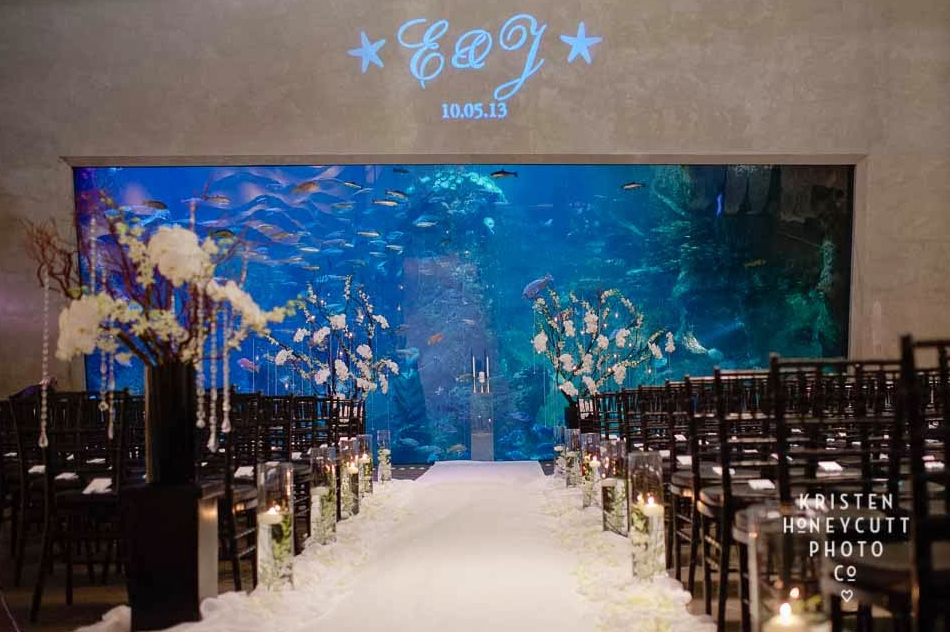 The Seattle Aquarium Wedding Venue