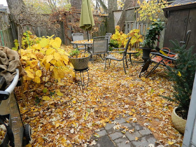 Monarch Park Toronto Fall Cleanup Before by Paul Jung Gardening Services--a Toronto Organic Gardening Company