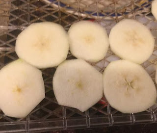 Dehydrating pears, Pears as a healthy snack, drying fruit, preserving the harvest,