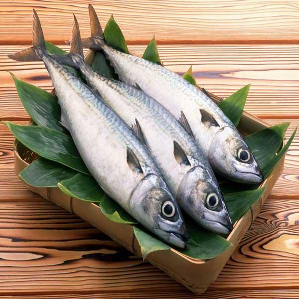 Manfaat-Ikan-Tuna