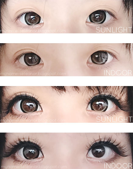 Luxury Babe 39 Brown Lens